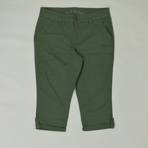 Gloria Vanderbild Regular  Green 14  Capri Cotton